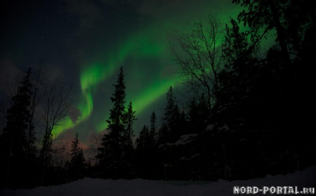 nordportal_auroraborealis