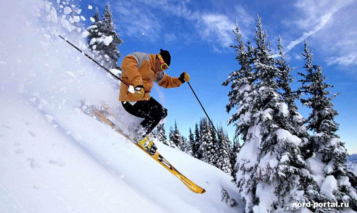 Как выбрать горные лыжи.